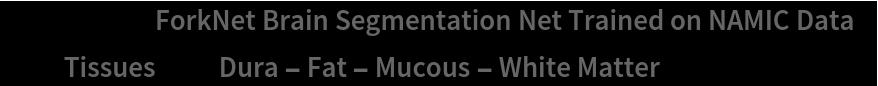 """NetModel[{""""ForkNet Brain Segmentation Net Trained on NAMIC Data"""", """"Tissues"""" -> """"Dura - Fat - Mucous - White Matter""""}]"""