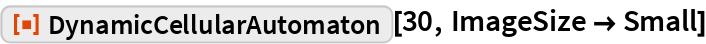 "ResourceFunction[""DynamicCellularAutomaton""][30, ImageSize -> Small]"