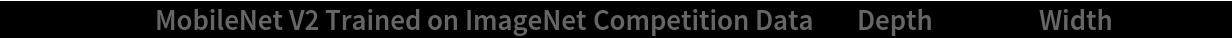 """NetModel[{""""MobileNet V2 Trained on ImageNet Competition Data"""", """"Depth"""" -> 1., """"Width"""" -> 224}]"""