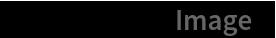 "darwinBook[""Image""]"