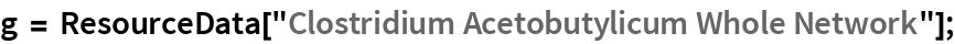 "g = ResourceData[""Clostridium Acetobutylicum Whole Network""];"