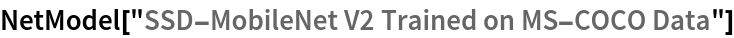 "NetModel[""SSD-MobileNet V2 Trained on MS-COCO Data""]"