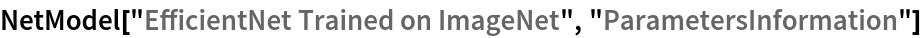 "NetModel[""EfficientNet Trained on ImageNet"", ""ParametersInformation""]"