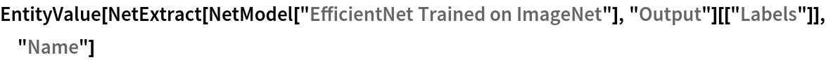 "EntityValue[  NetExtract[NetModel[""EfficientNet Trained on ImageNet""], ""Output""][[   ""Labels""]], ""Name""]"