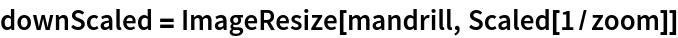 downScaled = ImageResize[mandrill, Scaled[1/zoom]]
