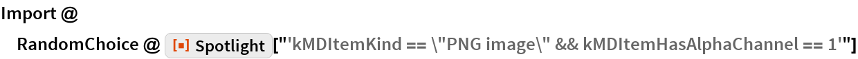 "Import @ RandomChoice @ ResourceFunction[""Spotlight""][    ""'kMDItemKind == \""PNG image\"" && kMDItemHasAlphaChannel == 1'""]"