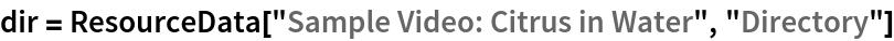 "dir = ResourceData[""Sample Video: Citrus in Water"", ""Directory""]"