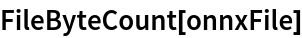 FileByteCount[onnxFile]