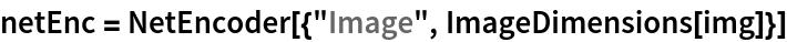 "netEnc = NetEncoder[{""Image"", ImageDimensions[img]}]"