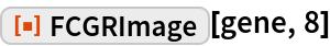 "ResourceFunction[""FCGRImage""][gene, 8]"