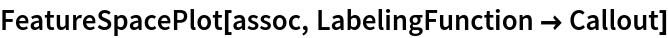 FeatureSpacePlot[assoc, LabelingFunction -> Callout]