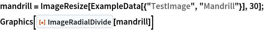"mandrill = ImageResize[ExampleData[{""TestImage"", ""Mandrill""}], 30]; Graphics[ResourceFunction[""ImageRadialDivide""][mandrill]]"