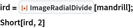 "ird = ResourceFunction[""ImageRadialDivide""][mandrill]; Short[ird, 2]"