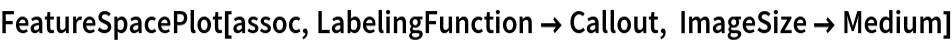 FeatureSpacePlot[assoc, LabelingFunction -> Callout, ImageSize -> Medium]