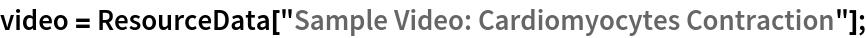 """video = ResourceData[""""Sample Video: Cardiomyocytes Contraction""""];"""