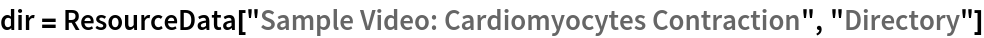 """dir = ResourceData[""""Sample Video: Cardiomyocytes Contraction"""", """"Directory""""]"""