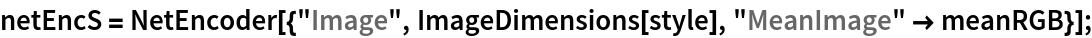 """netEncS = NetEncoder[{""""Image"""", ImageDimensions[style], """"MeanImage"""" -> meanRGB}];"""