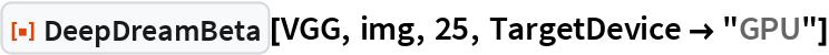 "ResourceFunction[""DeepDreamBeta""][VGG, img, 25, TargetDevice -> ""GPU""]"