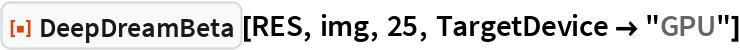 "ResourceFunction[""DeepDreamBeta""][RES, img, 25, TargetDevice -> ""GPU""]"