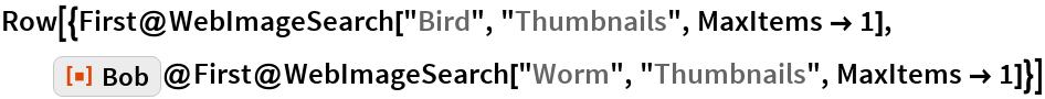 "Row[{First@WebImageSearch[""Bird"", ""Thumbnails"", MaxItems -> 1],   ResourceFunction[""Bob""]@    First@WebImageSearch[""Worm"", ""Thumbnails"", MaxItems -> 1]}]"