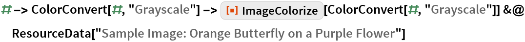 "# -> ColorConvert[#, ""Grayscale""] -> ResourceFunction[""ImageColorize""][ColorConvert[#, ""Grayscale""]] &@  ResourceData[""Sample Image: Orange Butterfly on a Purple Flower""]"