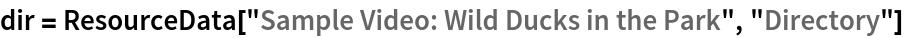 "dir = ResourceData[""Sample Video: Wild Ducks in the Park"", ""Directory""]"