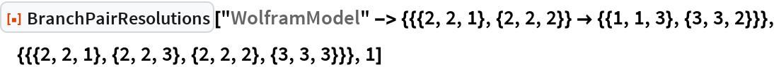 """ResourceFunction[""""BranchPairResolutions""""][  """"WolframModel"""" -> {{{2, 2, 1}, {2, 2, 2}} -> {{1, 1, 3}, {3, 3, 2}}}, {{{2, 2, 1}, {2, 2, 3}, {2, 2, 2}, {3, 3, 3}}}, 1]"""
