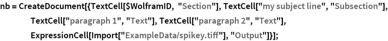 """nb = CreateDocument[{TextCell[$WolframID, """"Section""""], TextCell[""""my subject line"""", """"Subsection""""], TextCell[""""paragraph 1"""", """"Text""""], TextCell[""""paragraph 2"""", """"Text""""], ExpressionCell[Import[""""ExampleData/spikey.tiff""""], """"Output""""]}];"""