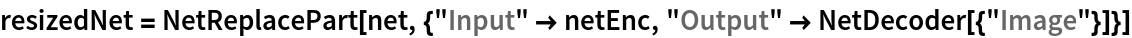 "resizedNet = NetReplacePart[   net, {""Input"" -> netEnc, ""Output"" -> NetDecoder[{""Image""}]}]"