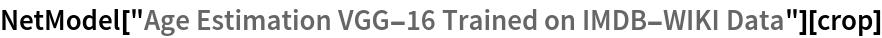 "NetModel[""Age Estimation VGG-16 Trained on IMDB-WIKI Data""][crop]"