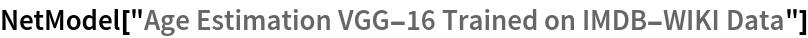 "NetModel[""Age Estimation VGG-16 Trained on IMDB-WIKI Data""]"