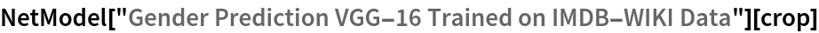 "NetModel[""Gender Prediction VGG-16 Trained on IMDB-WIKI Data""][crop]"