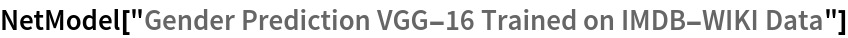 "NetModel[""Gender Prediction VGG-16 Trained on IMDB-WIKI Data""]"