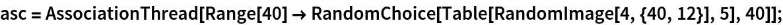 asc = AssociationThread[    Range[40] -> RandomChoice[Table[RandomImage[4, {40, 12}], 5], 40]];