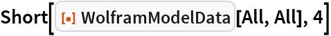 "Short[ResourceFunction[""WolframModelData""][All, All], 4]"