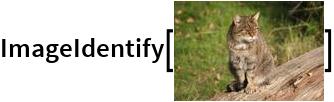 "ImageIdentify[\!\(\* GraphicsBox[ TagBox[RasterBox[CompressedData["" 1:eJw8uwdwa/l55Um11P36BT5GMCDnnHPOiQAIIhEEiJxzzgQIEgxgTi/366xO r1tqSbYsW2qrbckay3LUJHvHs7MzXs/UbNXWVs3s1lZt7VTtev+Uprbq4y0Q IPlY93fPd87hxcPEK670axMTE403wcEV62jq9VjPPQ0+WS83cplyKrlSbqYy qbo4/k3wZBJ8PAMft491zjmTG2LzLLu9iKAXH1nHR5zYsB2R8ZMLUWo2Tvb7 l22uByvrd+2RGU8KYt+cDqTgsQI+nMWE0rhIlhBMET0hZDBJSRTYiTw/EKcH IvRYihtJcDYCZH+A4vaiPBvoRIZea4mbPVGpzsqUCNU2s1AjpUvoVBGVKWMK dUKxQcw1icESItLCZbrUTIscK+GieUymSAHfUq1zShVmocrOVVjRNNEVgnki iEieHE2SAkG0dW1eqbsr19xVGGdUpnmJYU5uhgqNi3w9hGuE8EwLXPMi37Yk tiNkNpTQAOVplwV6mFiP5KuhHNkSW7rIli6xJIsM4SKVN09izxGYMwTWPJEN YUvgHCmCJ8eA4UqxLBGKxoNTOFAcbQFNnsOQF3DUJSxlGY6bg2JmwHEO9hBB WMKQlqHo2SX4QzR+gcnGCkQUkYDIZqLYVCiLskzGTBFRkzI+xuNUs4XkB4t3 IYjpJdTU3NK30NgHBMIkiXiPz5wPeCUreqJSAlPLEGIeRAJ+N+pDlgjLVzHp AvwM9C4CM01lIsw+qMUHs28g3T60z4sLegghBy5oR5VirGqak08xNoMI6/q0 yfPA5J9cCU46grPBNCJeJERy+HAGH8uTojlqIEkIp2mpEjdV4gcTjGCUAQhG k1x/iOr0oq2OJZtzMRAjFGqcaodfbLCyVVK1yyi1qLkaPlvFFZukSoda69Er A0asjo80CYkmMVknxMv4RImYKVMLVUahyswUqdkSrVBnpcoMfxK9HkMFM4RU jp5M0QJB7Kpj0WRb0FsX1eZFmR4i0kHEhkWxeVlsgYqsUKFlWWiDydaQgKBA v8zVLImMCLkZKzGgeAooS7LAV8LBcGVwumABEMQzpgnMOTJngSWGMUVQpgg8 D6XxYFQuFOADg6cvAoJIwhyKOI/Azy+jbxHAsLPLmFkMBU6kIwFEFA6CIy1T aAg6E43DzHJYaC4LScLMULDTCiF+RcvSqVlo4tLdmW/NQu/PLt+dmf8GjjDF Zi5KBFCTluBzC+wrNNcqC3Bk0yb5nFkeb1GlZ8r0LDoPMwmZWIDdwRFnLEGs LYBd3cSv+XAuD27djdtwYH0ObNhLivhJGxsYm2tBtzaldU+qvZMa731HCBLM ohNlSrRAjOaIyRI1VWbF8rRolpEu87IlQSTJBASjSQ6YzRjD6obqVmd0q9PO ADxaoGQbzEyDlq6Ty1vMYpeeb1MLHVqlz2ru8tt7wvaBKNdnpbYYqRY13aSA r8w16IA4mHyNkcgTkwVSsc0pdfmJKjWQxW2mMO2OrNdRNmvSbIYTDtM3/GSn h2BxYGXaBaUJrraiVTa0zIoEKEUrtzQlFgRXt8hRQ8QmuMqKk5vRAhWULYVI 9RiZASvVoHnSZSpnlsh4SGHN0fhAlcvgSObME1mzeMYswEpkLpBYS4AgijQL w05DMVOA3TzsPgT+AHCch0/CcPOAC4qwiAIP8BA0dh6BmkEjp6jkZRp5kUKE yIS4VbNAK6Pg0FMzkDden5yYg96bmnttcnoCi3/AoM0KOAv2FbpRg7MZyMmw 0rXKYNPuAxlqNTi+GCFU4dkC5Axk4uH0BBz1rZUgAYzVT7R58TYXds2JdTsI XtfteFzYFfuSyjwltTyQOx/KPNNy931bEBLMYJMVaqwI1EcEckhX2PECPZZj AA1mivxIkh6IUkMxZiTBBnq0+xF617zGMWXdXNx"